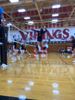 Womens 2019 Volleyball Season